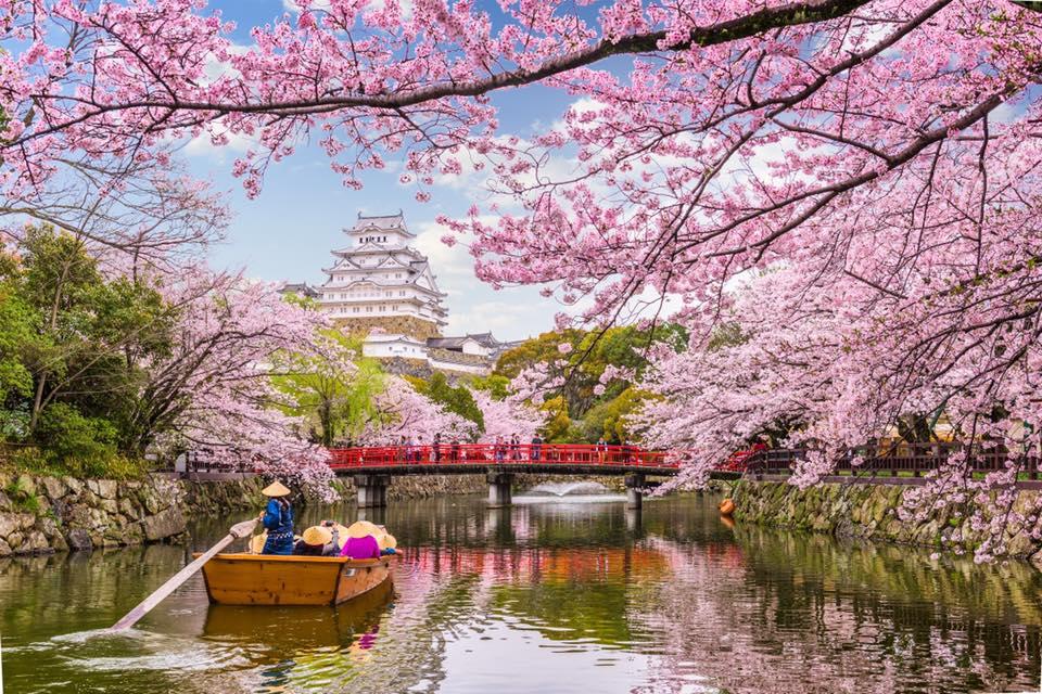 япония виза