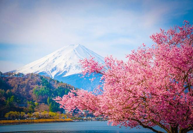 Виза в Японию: как оформить самостоятельно?