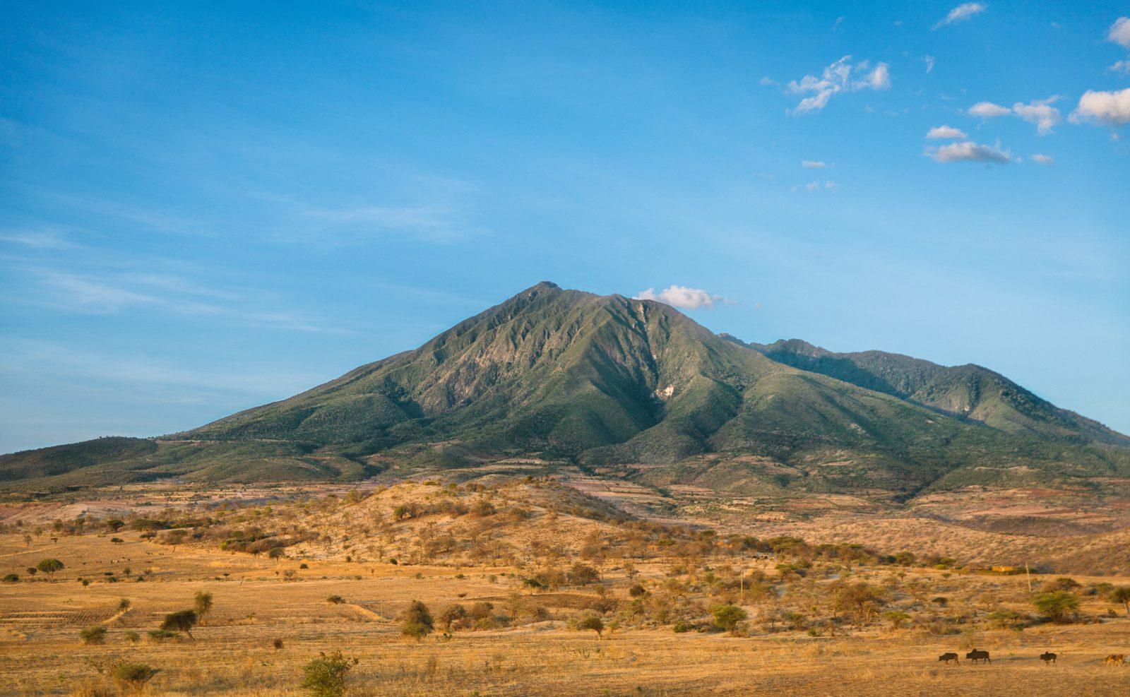 Виза в Танзанию: нужна ли в поездку для россиян?