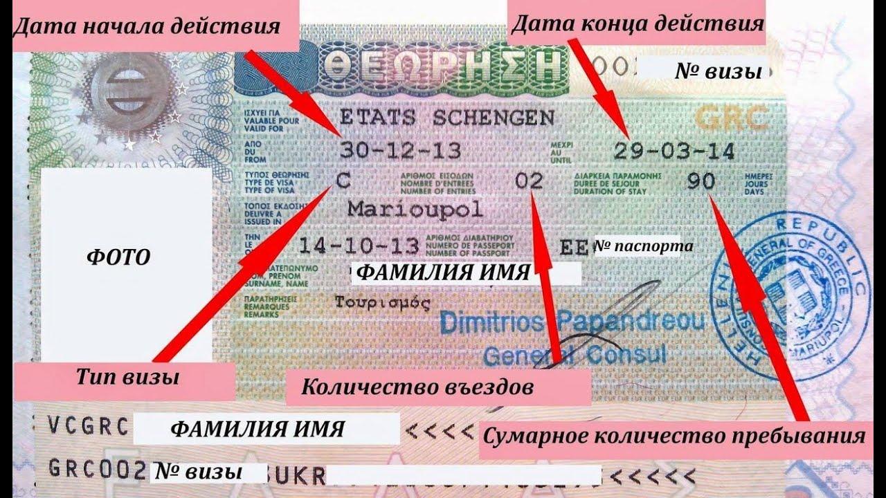 где смотреть номер шенгена