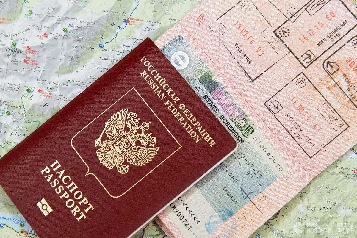 Где смотреть номер шенгенской визы?